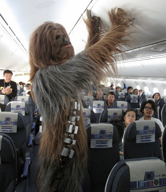 Chewbacca, Need We Say More?