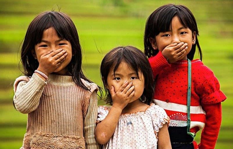 Vietnamese-Language