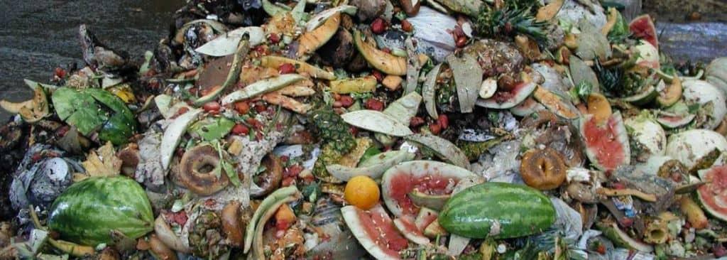 Food-Trash
