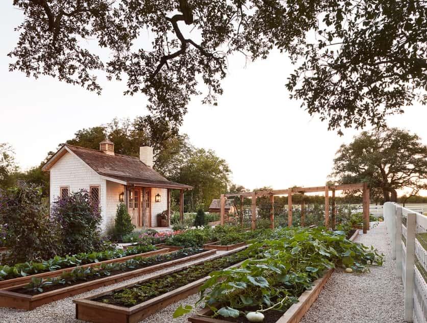Joannas-Garden